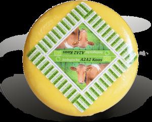 Kaas groothandel